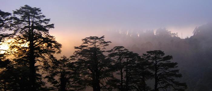 slide4-misty-landscape